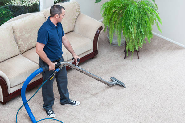 Image result for Cheap Carpet Cleaning Melbourne